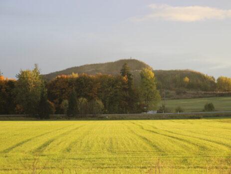 Foto: Raimo Metsamärt